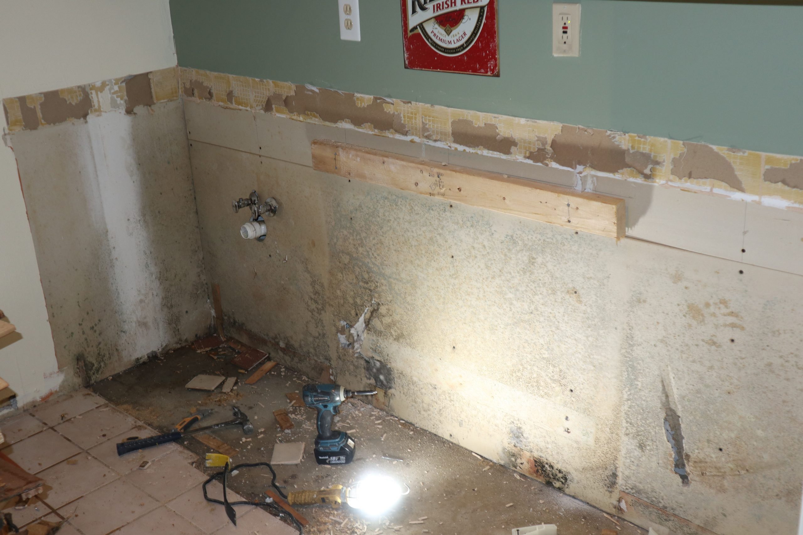 Mold behind cabinets